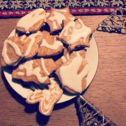 Hunting for the best honey gingerbread cookies recipe